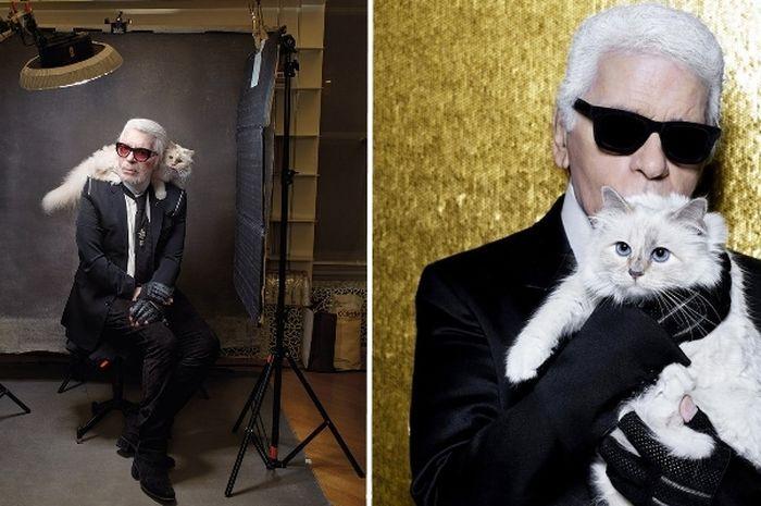 Kucing Karl Lagerfeld Kaya Raya,  Dapat Warisan Harta Senilai Rp5,3 Triliun dari Pemiliknya
