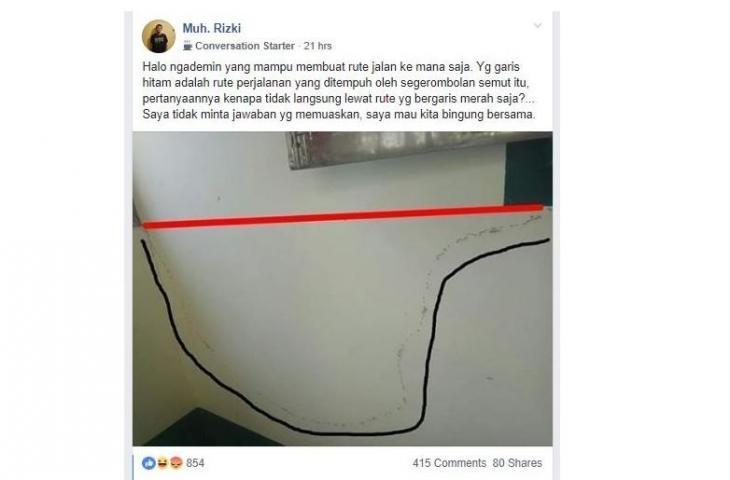 Rute Semut Ini Sangat Misterius, Netizen Sibuk Mencari Jawabannya