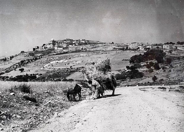 [On This Day] 15 Februari 1948, Pembantaian Penduduk Sa'sa' Palestina Oleh Kelompok Zionis Radikal