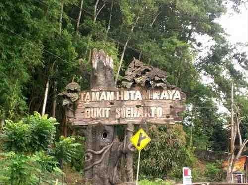 Pemerintah Janji Ibukota Baru Tidak akan Ganggu Hutan Lindung Kaltim