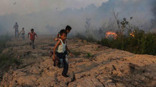 Greenpeace: Penanganan Kebakaran Hutan, Jokowi Hanya Sebatas di Mulut