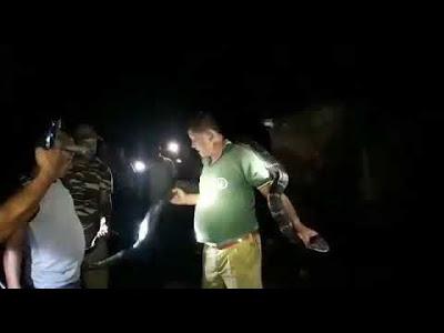 Viral, Video Penjaga Hutan Kalungkan King Kobra di Lehernya