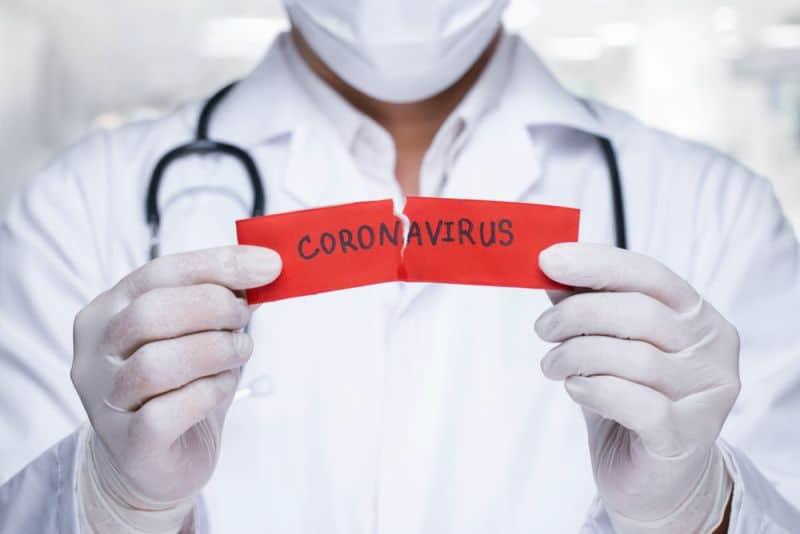 Ingat! Ini Cara Penyebaran Virus Corona